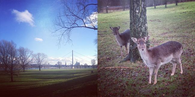 rueckblick_2014-01_03