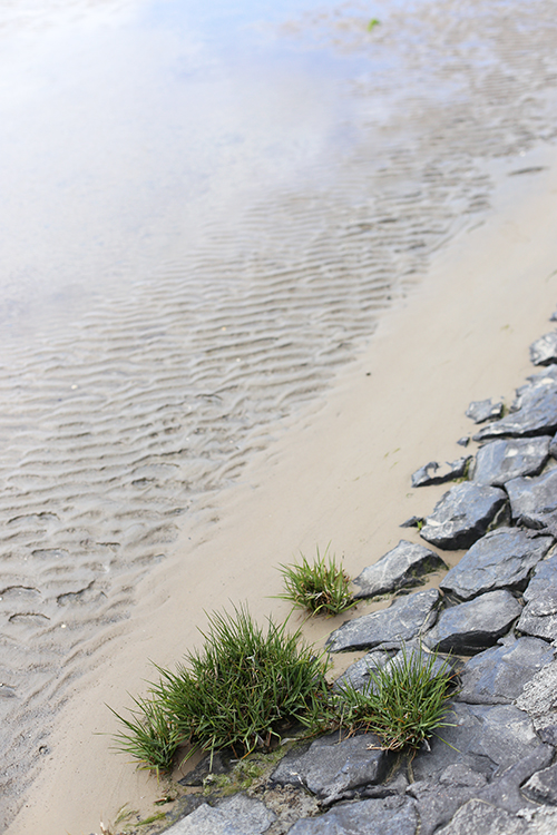 Gerolsteiner Projekt Wasserwoche