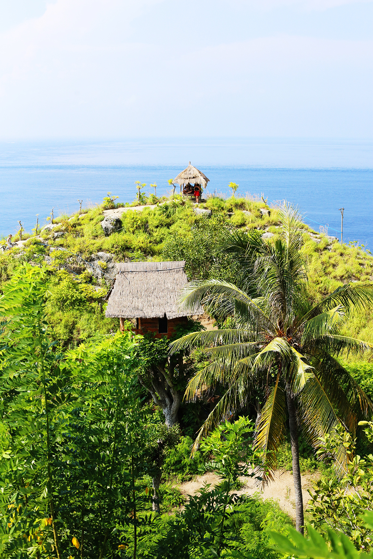 Nusa Penida Tree House Rumah Pohon Baumhaus